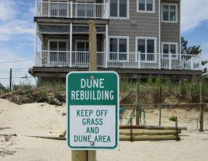 Dune Plantings sign